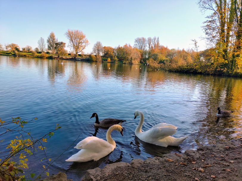 Coate Water Swindon We Are Swindon