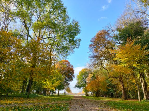 Lydiard House and Park in autumn. Swindon. We Are Swindon