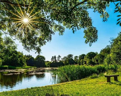 Photo Nick Smith - Stanton Park We Are Swindon