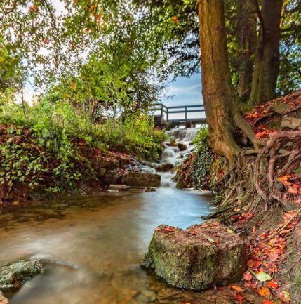 Photo by Nick Smith - Stanton Park stream We Are Swindon