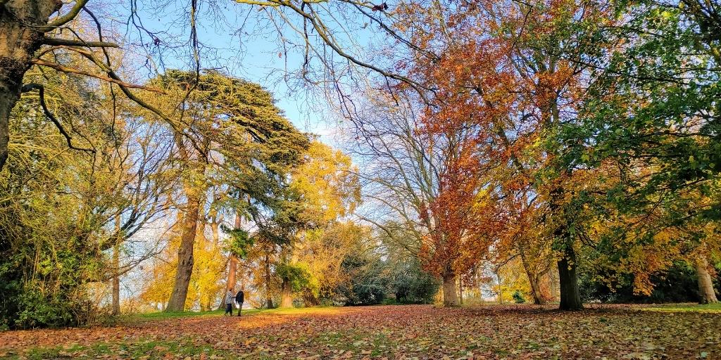 We Are Swindon Autumn in Swindon