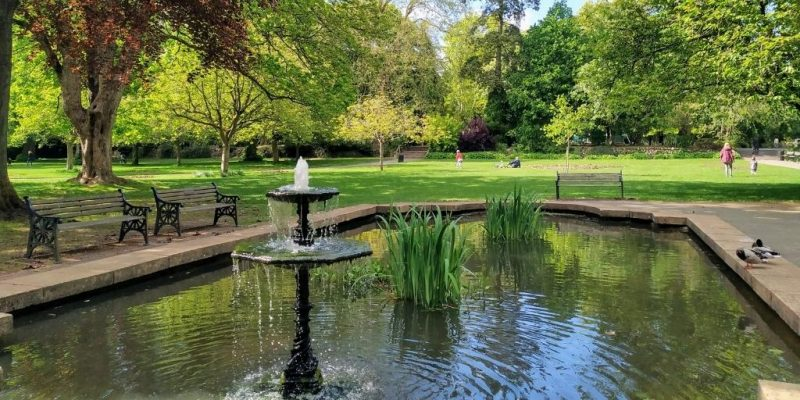 Town Garden Swindon