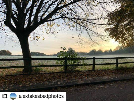 Lydiard Park Swindon by Swindon photographer Alex White We Are Swindon