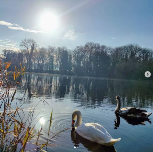 We Are Swindon Coate Water November 2020