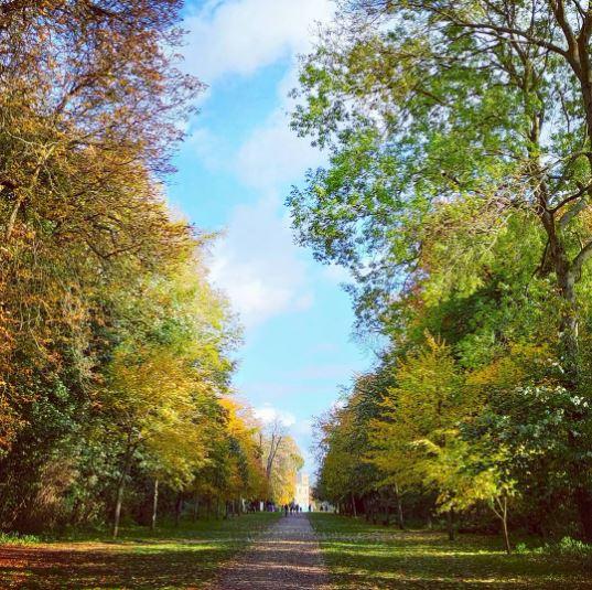 We Are Swindon Lydiard Park in autumn November 2020