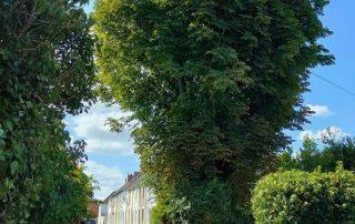 Old Town Swindon